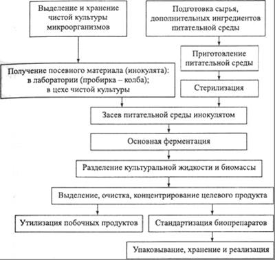 Схема получения микробных